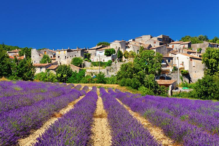 Provence antique  | Organisation séjour éducatif
