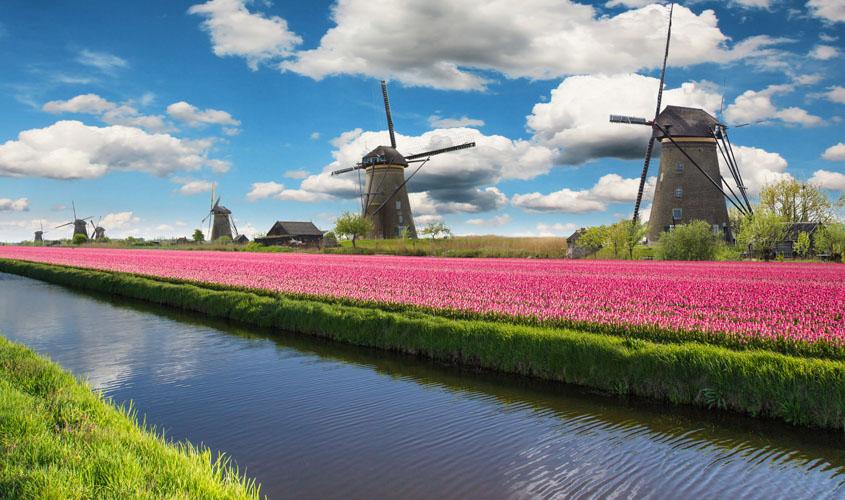 Pays-Bas au pays de l'eau | Organisation séjour éducatif