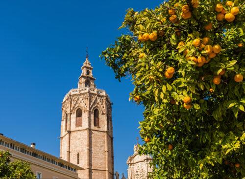 Jour 5 Valence | Organisation séjour éducatif